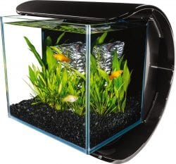 Marineland Silhouette Floating C 3-Gallon Aquarium Kit